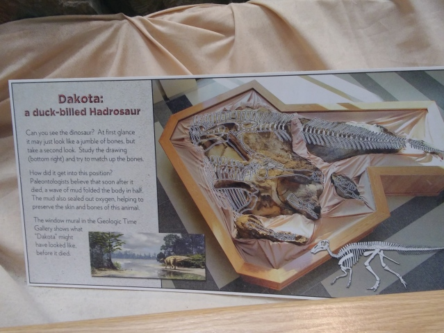 A Day With The Dinosaurs at the ND Heritage Museum