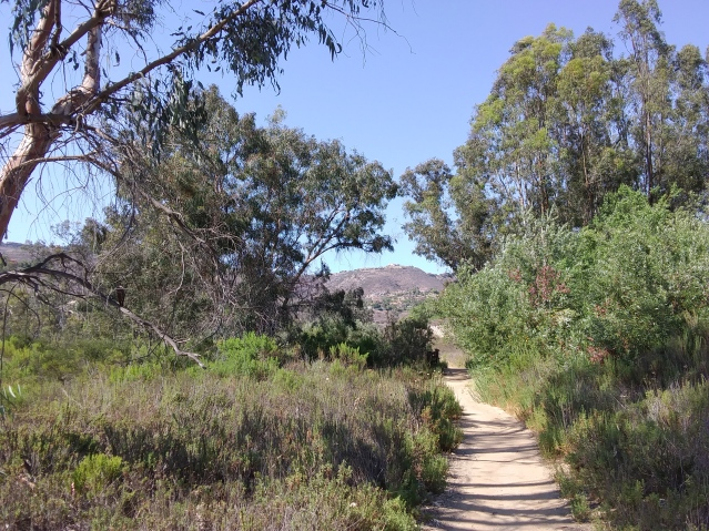 2 for 1 Archeological Trails|Santa Fe Valley and Del Dios