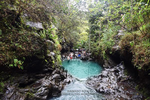 Waimano Pools Waterfall Trail 5