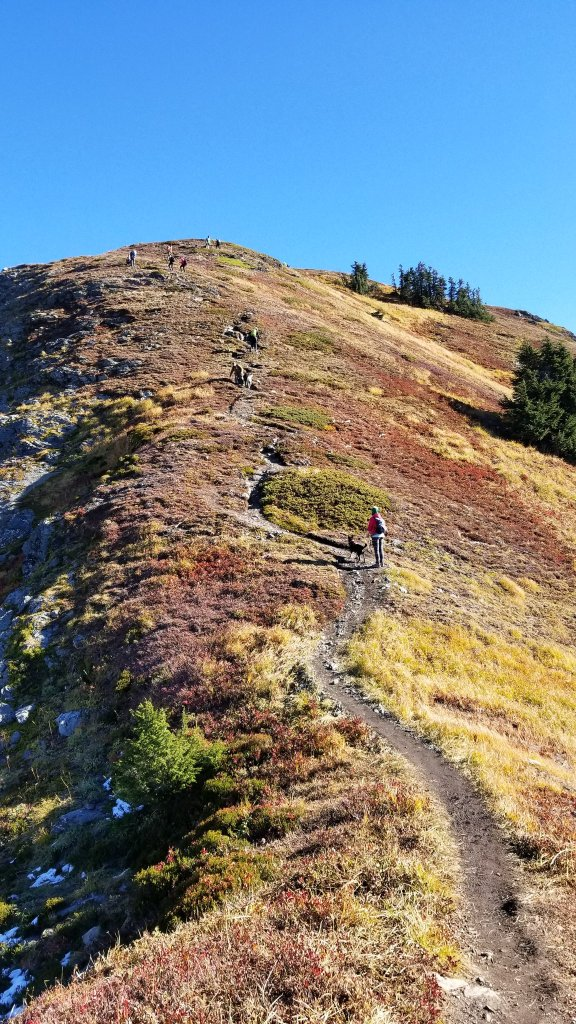 25 Amazing Hikes Near Seattle, Washington. FitlifeandTravel.com