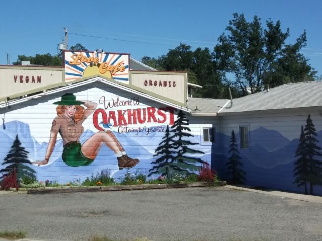 Street art in Oakhurst, California. Cool small towns in California.
