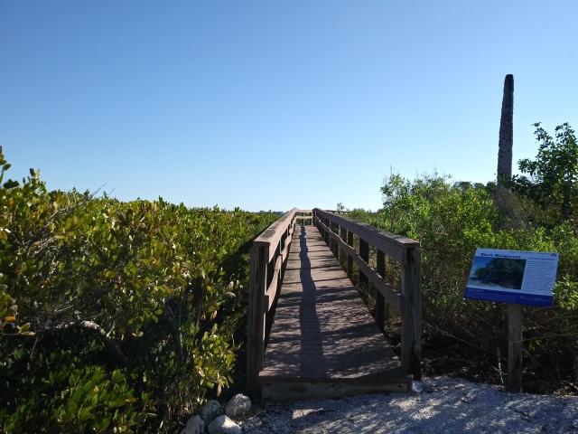 Manatee River Florida