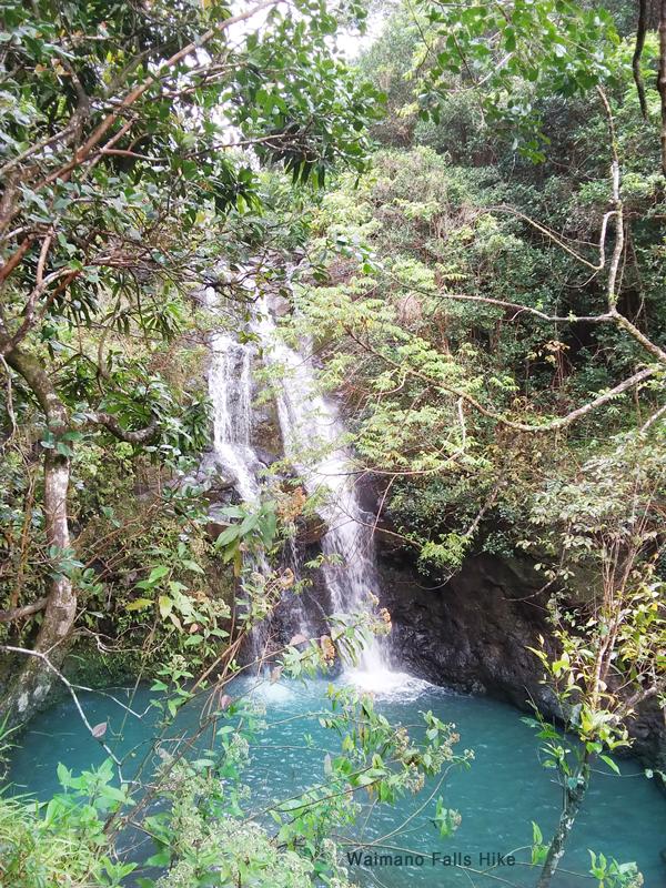 Waimano-Falls-Hike-2