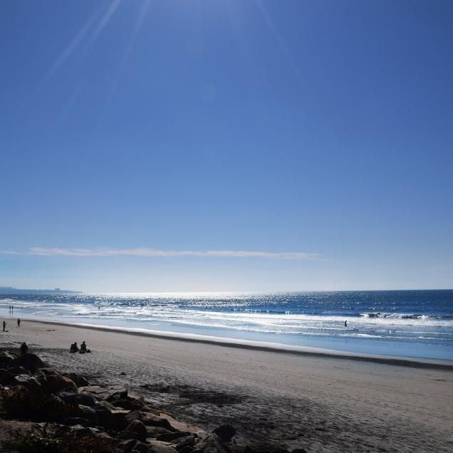 DSC_0013TORREY BEACH