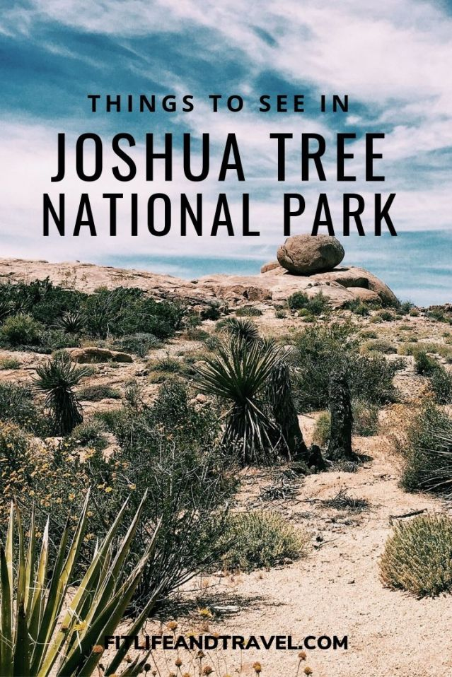 Joshua Tree National Park Fitlifeandtravel.com
