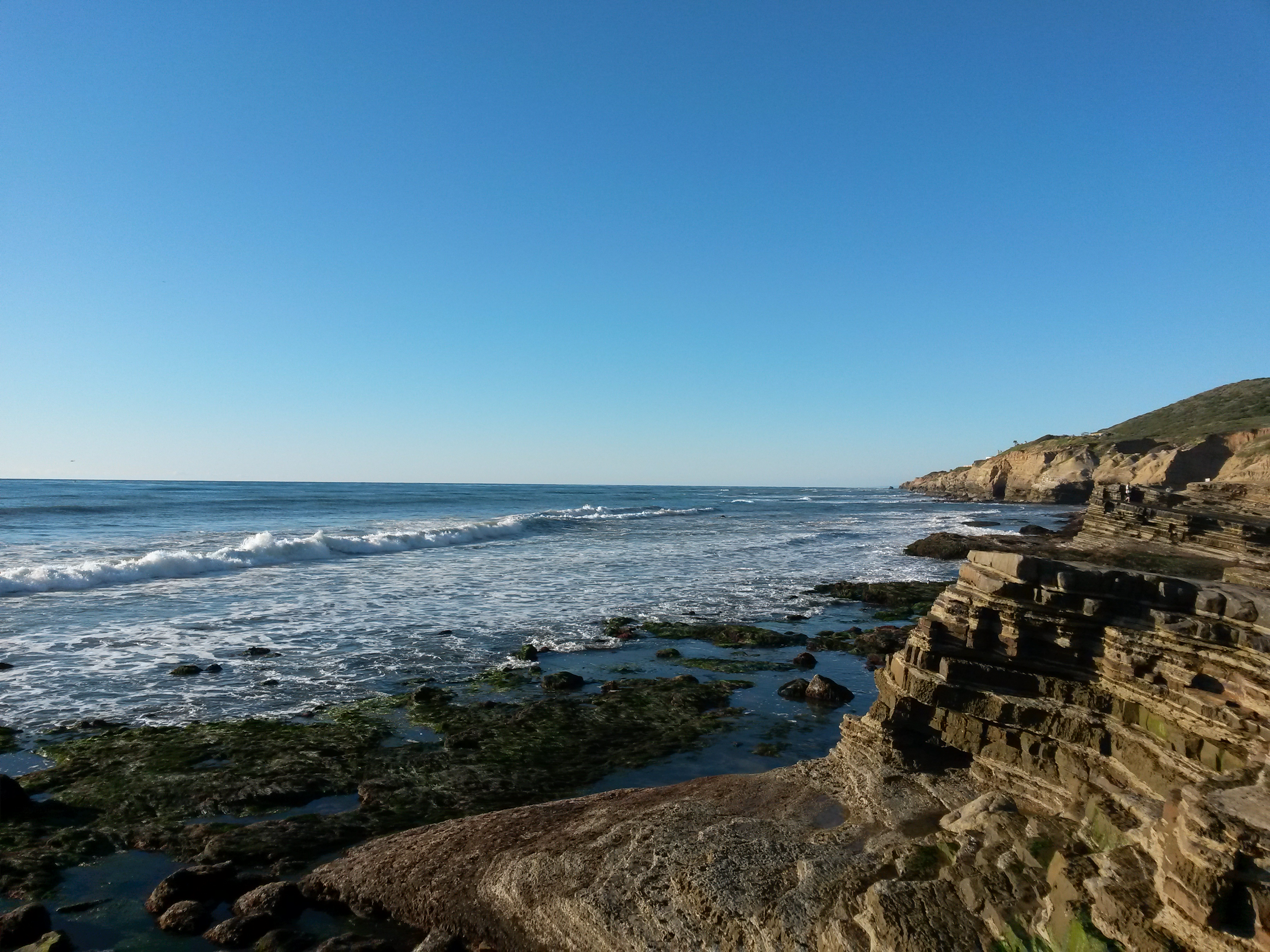 Tide pools at Cabrillo National Monument