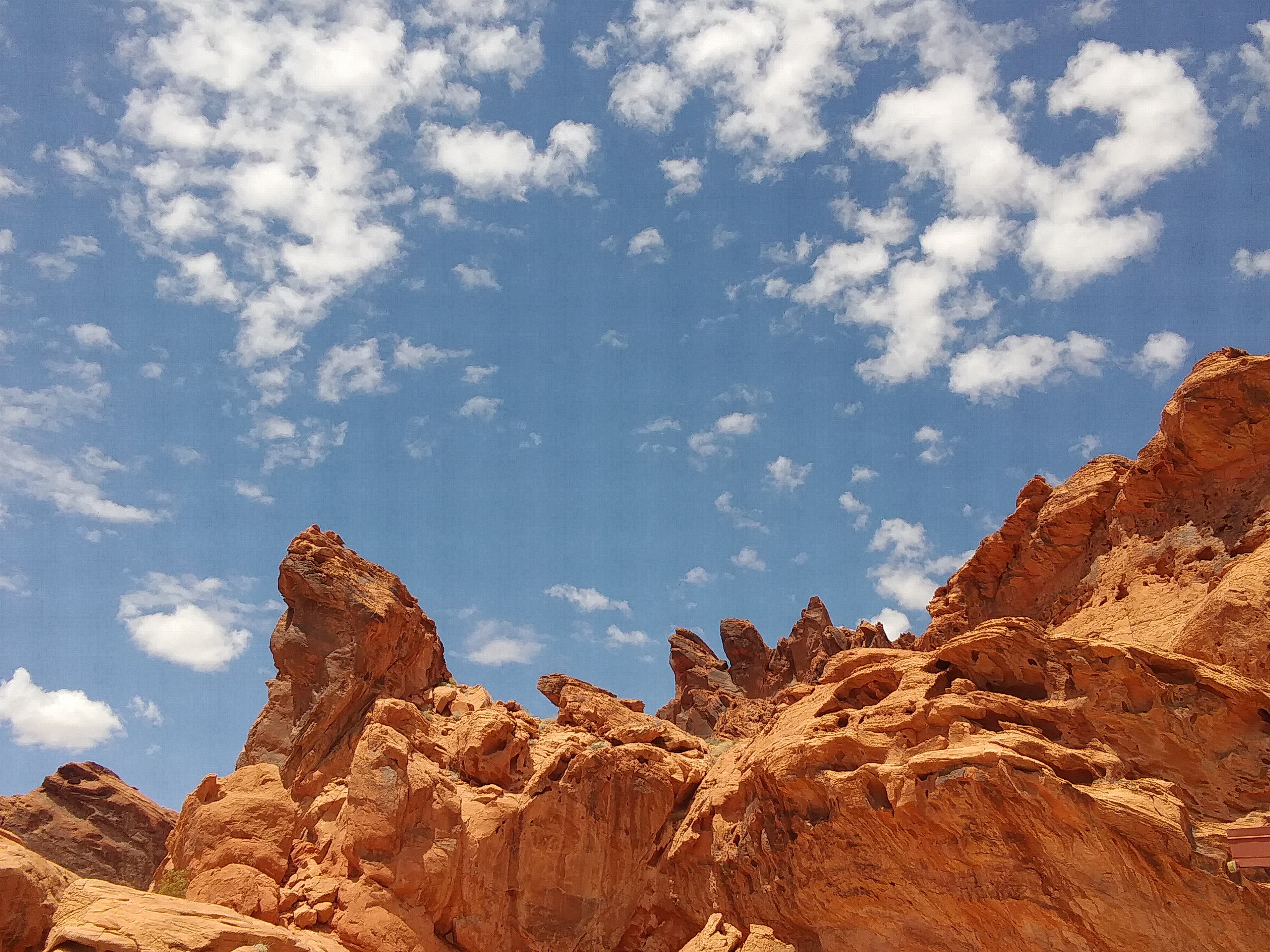 Rocks form to look like fire! Valley of Fire, Nevada. FitlifeandTravel.com