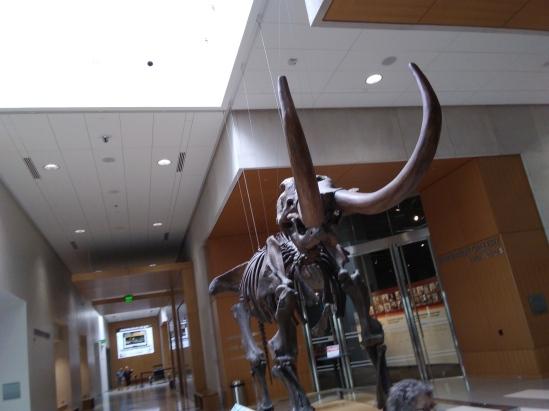 ND Heritage Center Fitlifeandtravel.com