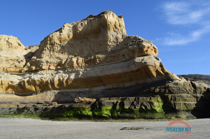 Torrey Pines Beach FitlifeandTravel.com