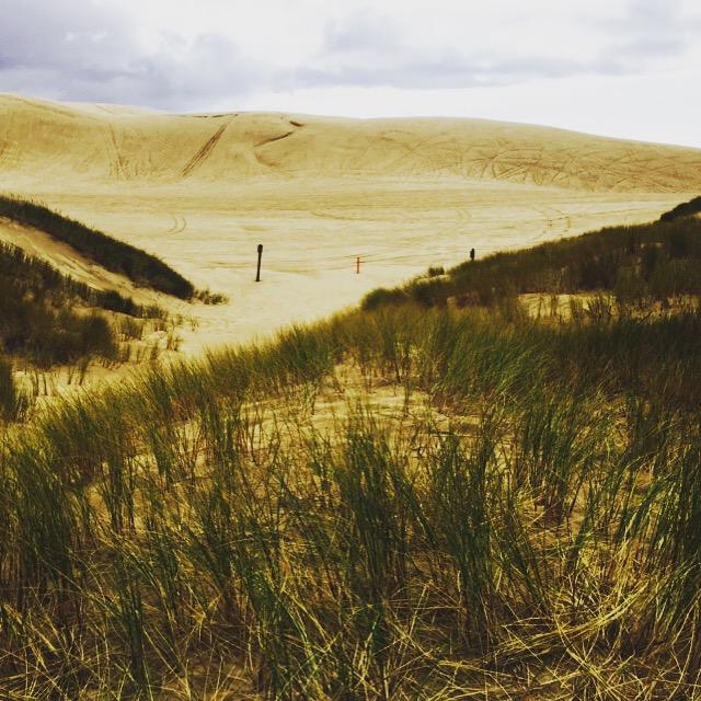 Oregon Dunes. FitlifeandTravel.com