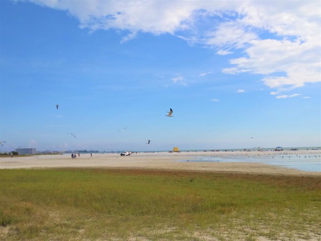 Siesta Beach, Siesta Key, Florida. FitLifeandTravel.com.  Sarasota