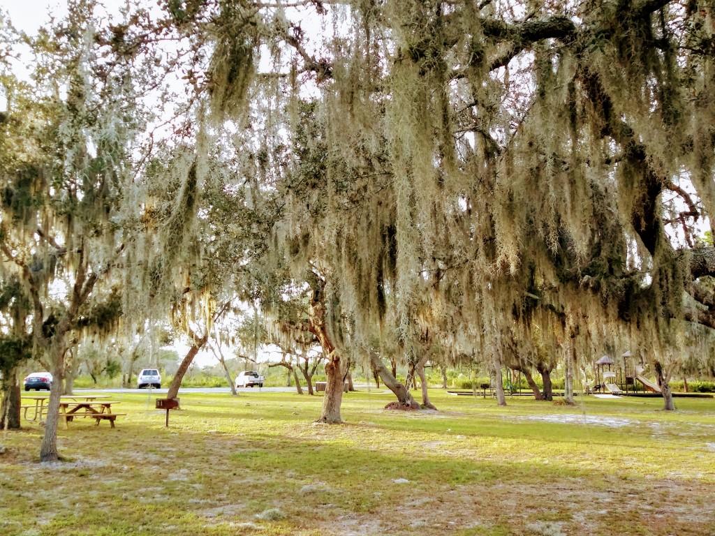 Recreation picnic area Lake Manatee State Park, Florida.  FitLifeandTravel.com