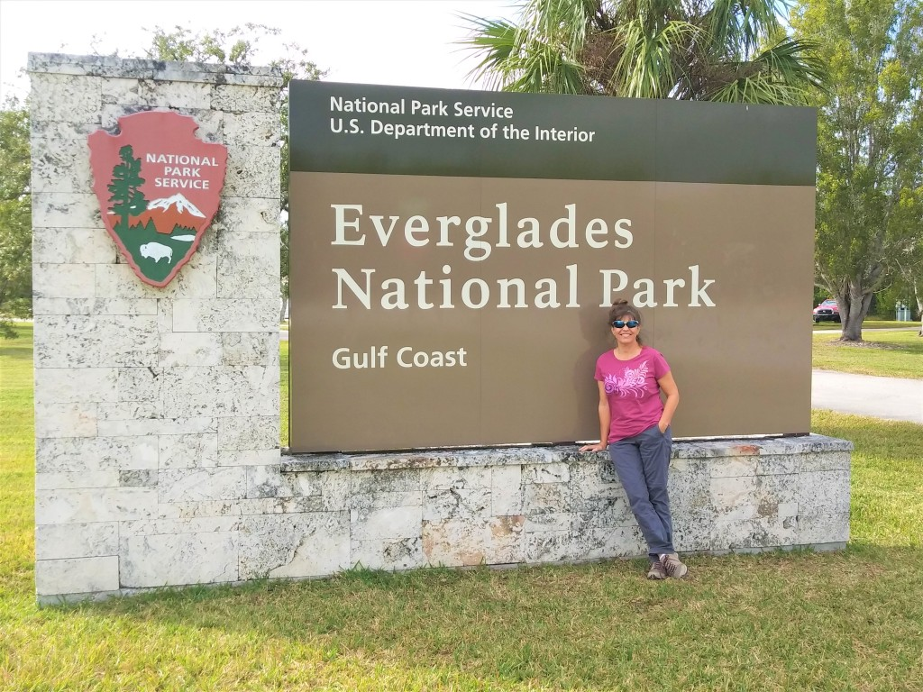 A Mystical Journey Through Everglades And Big Cypress
