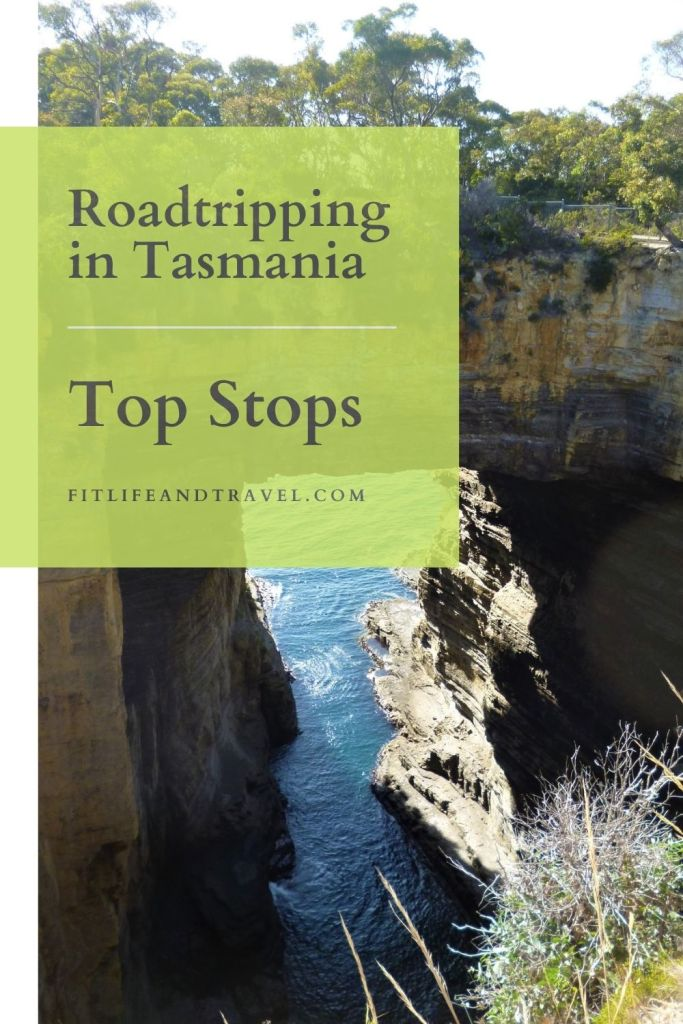 Road Tripping in Tasmania! Top Stops.  LostAngelAdventures.com  Fitlifeandtravel.com