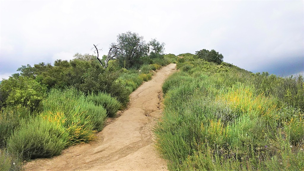 Preparing For A Challenging Hike. FitLifeandTravel.com