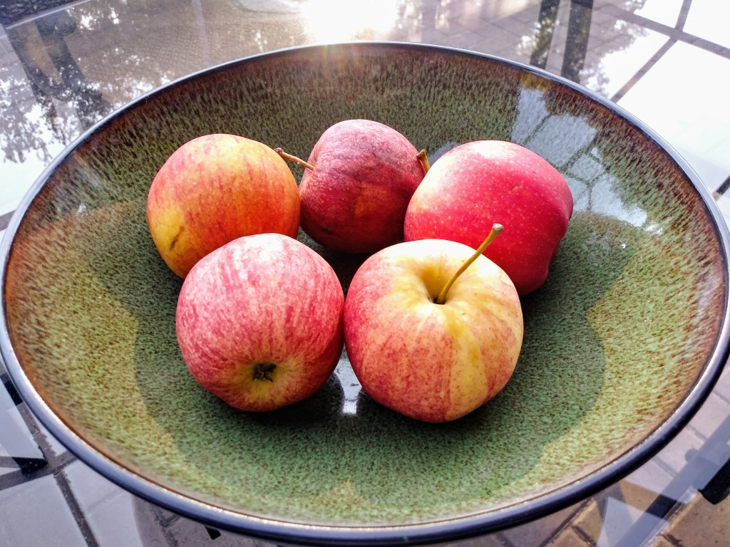 Apples. Best Foods To Consume For The Active Enthusiast! Fitness. Healthy. Fitlifeandtravel.com