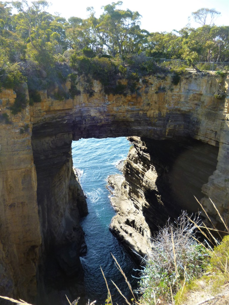 Road tripping in Tasmania. Lost Angel Adventures.com  Fitlifeandtravel.com