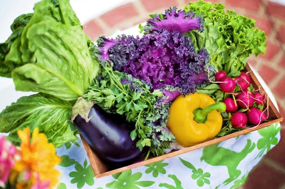 Pixabay.com. Vegetables for Good Health. Fitlifeandtravel.com