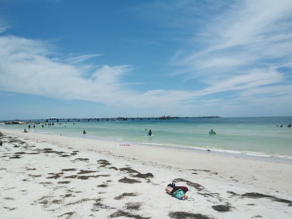 Fort De Soto Beach, Florida. Fitlifeandtravel.com Manatees, Sand Dollars, Shells.