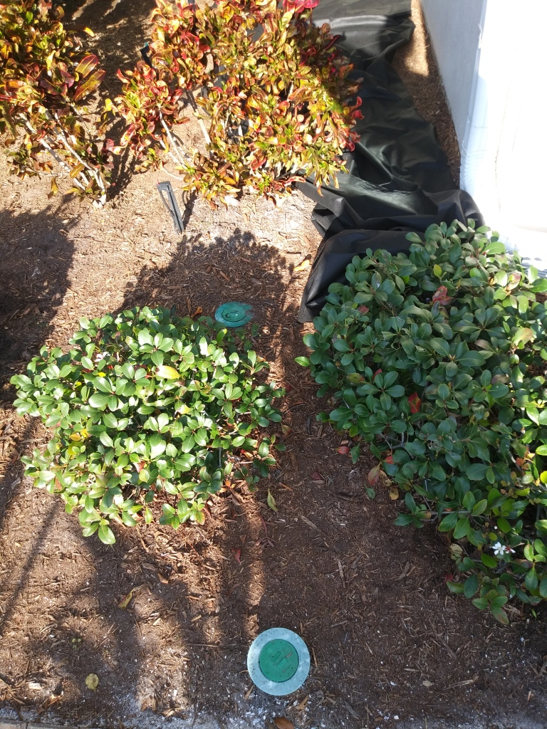 Landscaping Weed Cover. FitlifeandTravel.com