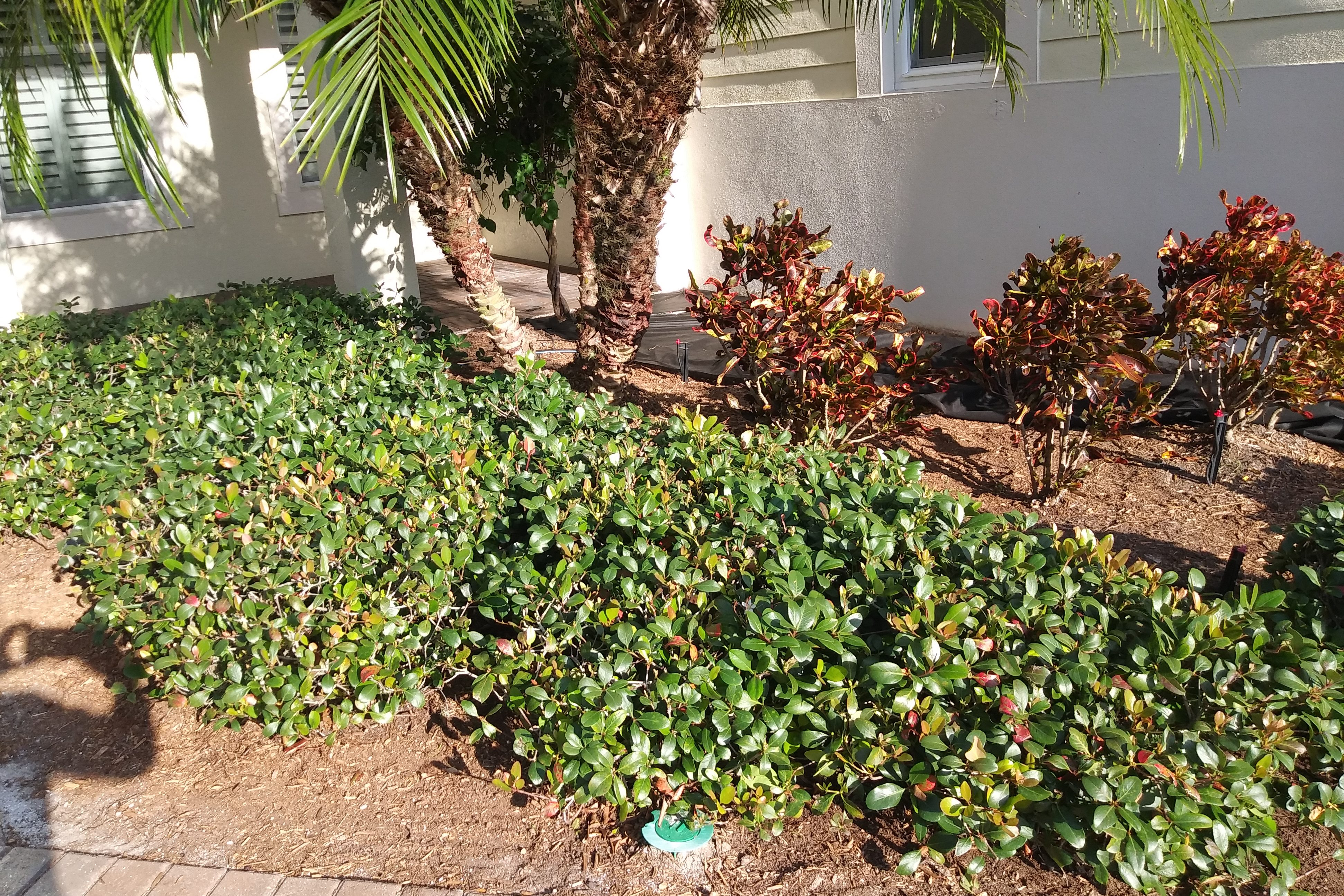 Landscaping: Removing Mulch and installing Rock. DYI Adventures. FitlifeandTravel.com
