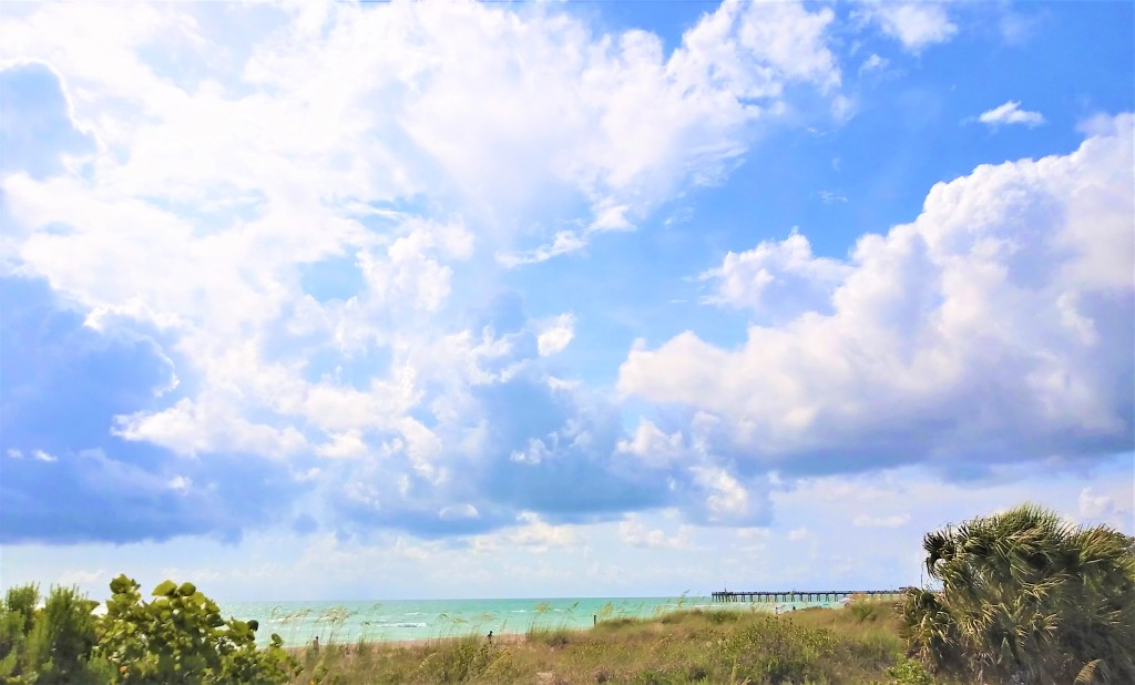 Venice Florida shark tooth collecting. FitlifeandTravel.com