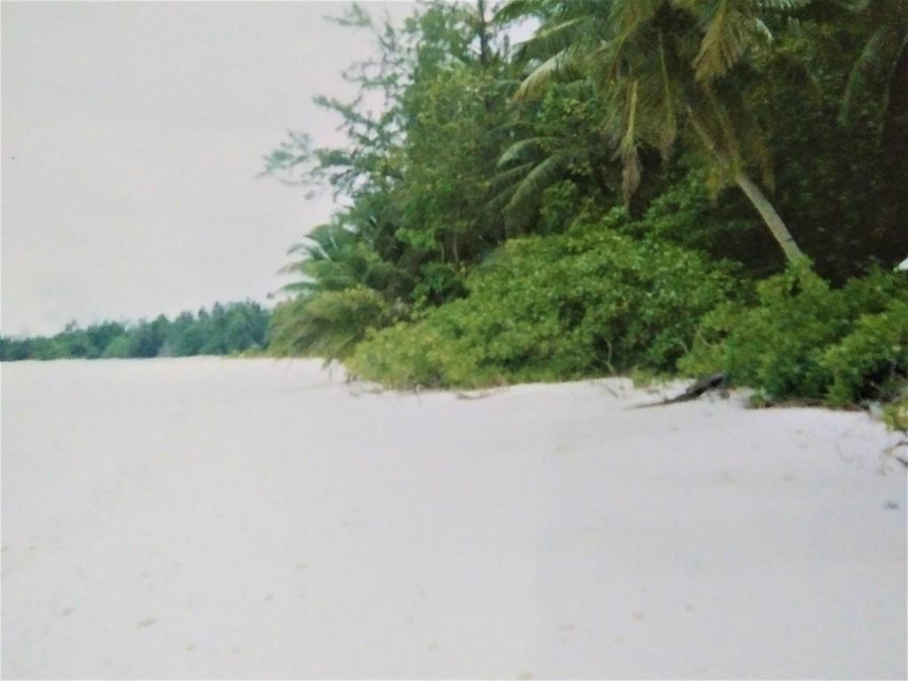 The beach at Diego Garcia