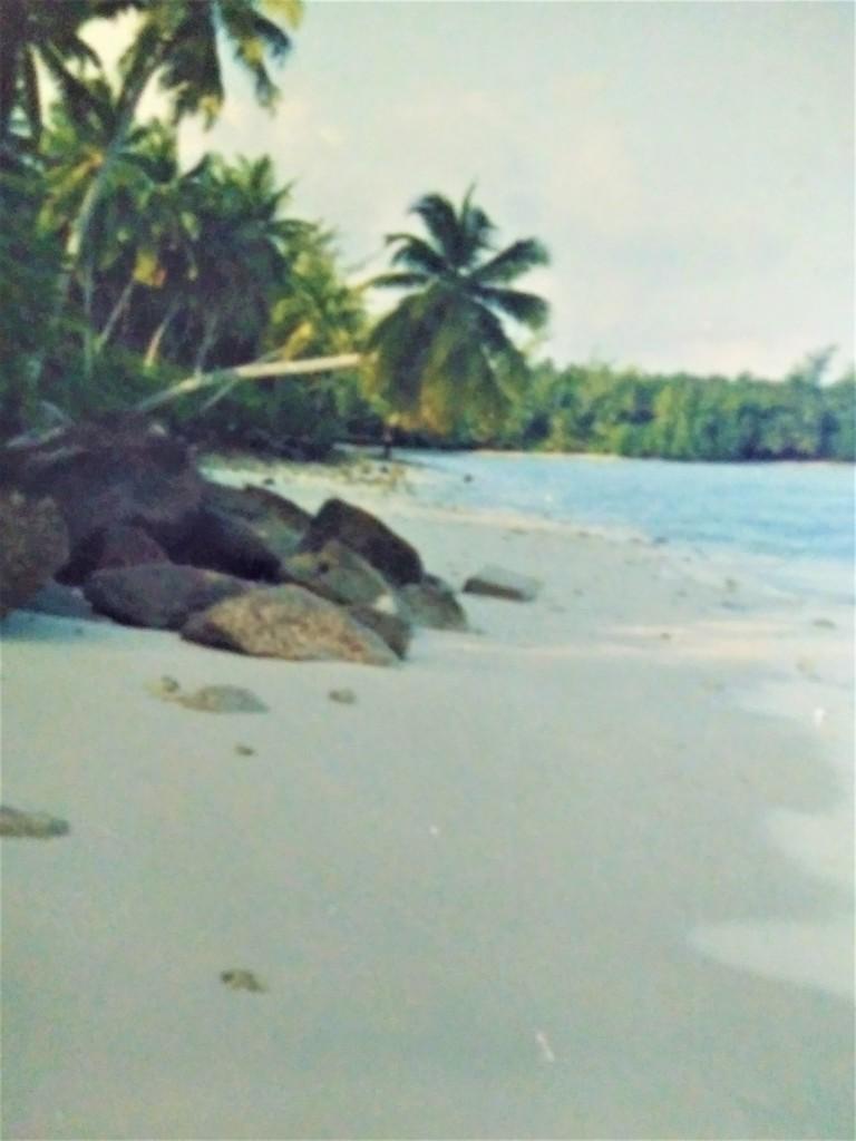 Diego Garcia military base island. Fitlifeandtravel.com