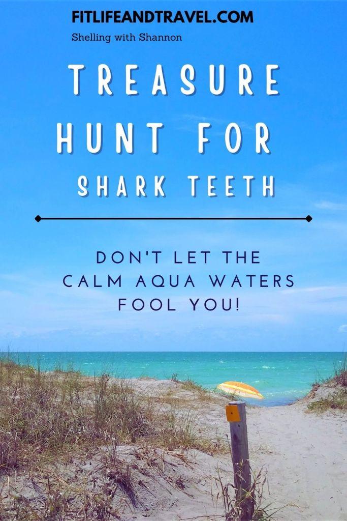 Hunt for shark's teeth in Caspersen Beach