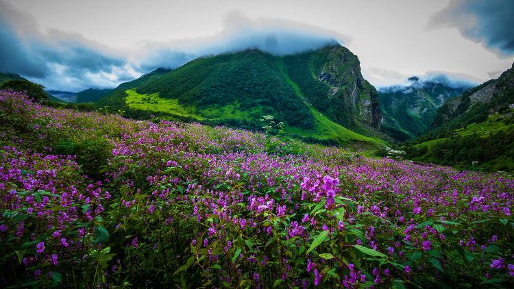 Best himalayan treks in India. Fitlifeandtravel.com