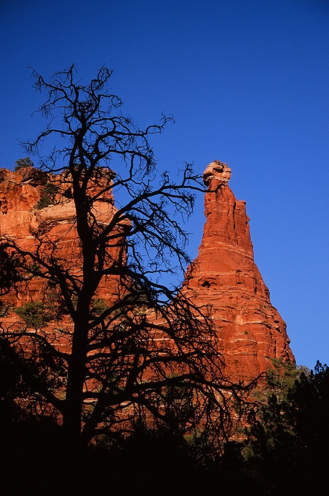 Sedona Arizona adventures. Fitlifeandtravel.com
