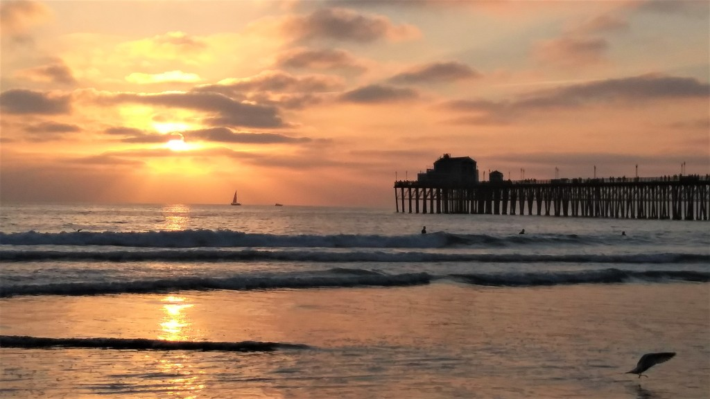 Beaches in San Diego